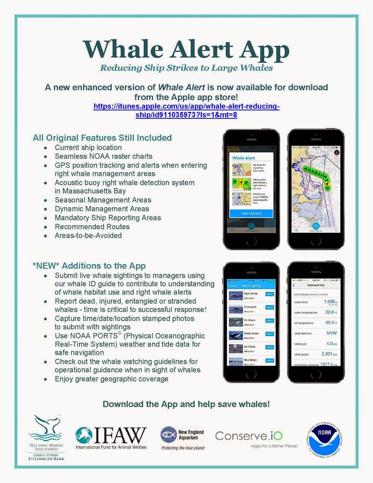 WHALES: Reducing Ship Strikes Worldwide with Whale Alert App